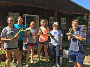 Volunteers come from all over the area, including Scout troops, colleges, and church and civic organizations. Photo provided.