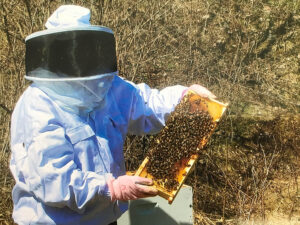 Nurse Gail Carmichel, is the vice president of patient services for Nascentia Health. On the side, she keeps bees, an interest that attracted her eight years ago.